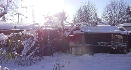 Winter auf der CityFarm