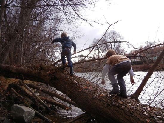 Kinder in ihrer natürlichen Umgebung: draußen im Wald am Fluss.