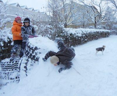 Schneerutsche Marke Eigenbau.
