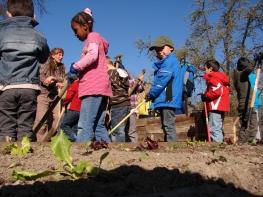 Jede Schule und jeder Kindergarten sollte einen kleinen Nutz- und Naschgarten pflegen.