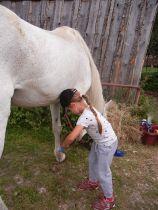 Erstaunlich selbstsicherer Umgang mit großen Tieren, gelernt auf dem Bauernhof der Großeltern.
