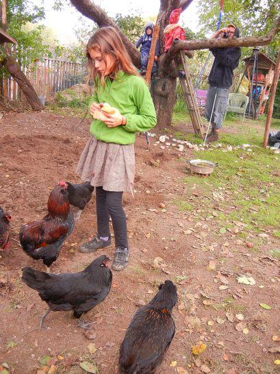 Auch die Hühner feierten mit!