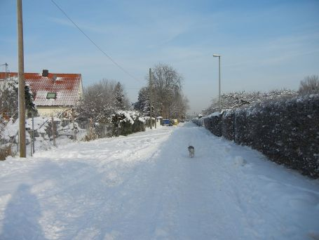 Wintermärchenland auf dem Weg zur CityFarm am morgen.