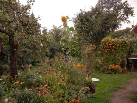 Unser Garten 2013