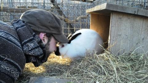 So sagt man Hallo auf Kaninchenart.