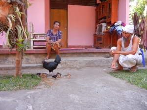 Glückliche Hühner in Tampasiring.