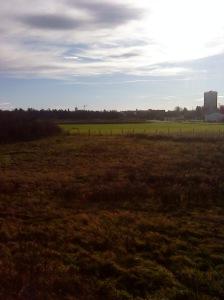 Bisher nur Wiese und gestrüpp - bald aber eine blühende Farm!