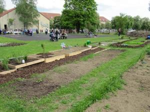 Vorgeschmack auf die das Frühlingsfest: interkultureller Garten Grow Up