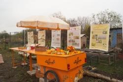 Ausstellung Nutzpflanzenvielfalt. Foto: D. Rieker